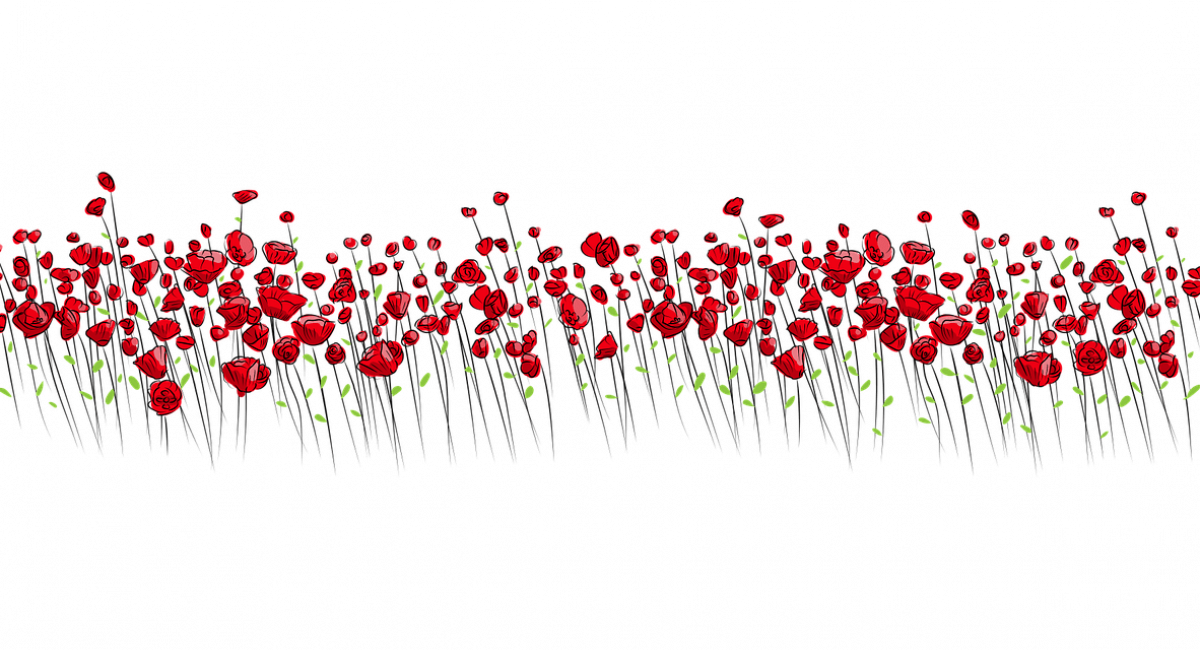 flowers-2755297_1280